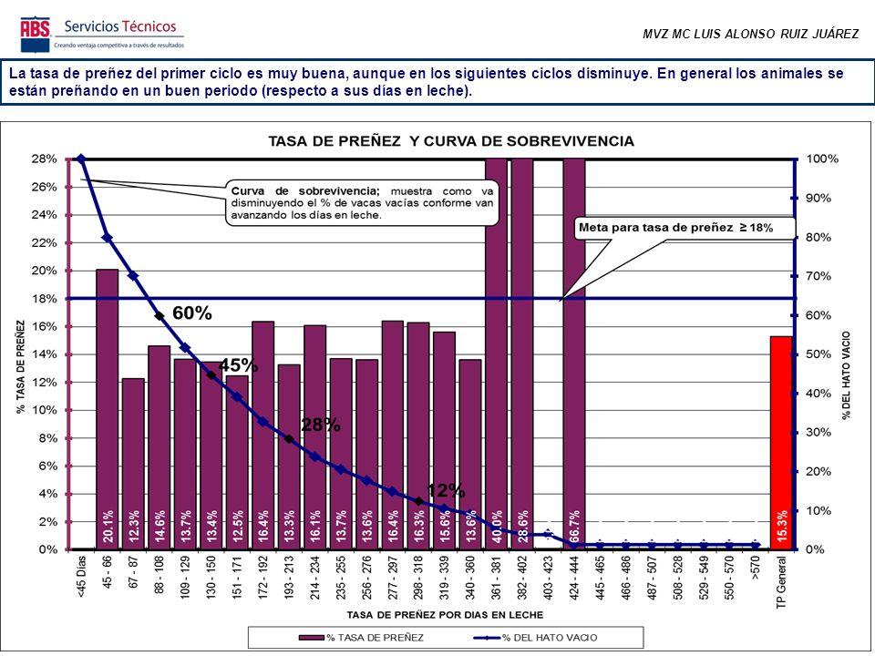 MVZ MC LUIS ALONSO RUIZ JUÁREZ De todas las vacas gestantes, el 74 % se preñó antes de los 150 días abiertos.