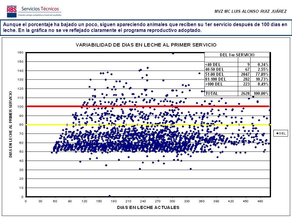 MVZ MC LUIS ALONSO RUIZ JUÁREZ Aunque el porcentaje ha bajado un poco, siguen apareciendo animales que reciben su 1er servicio después de 100 días en leche.
