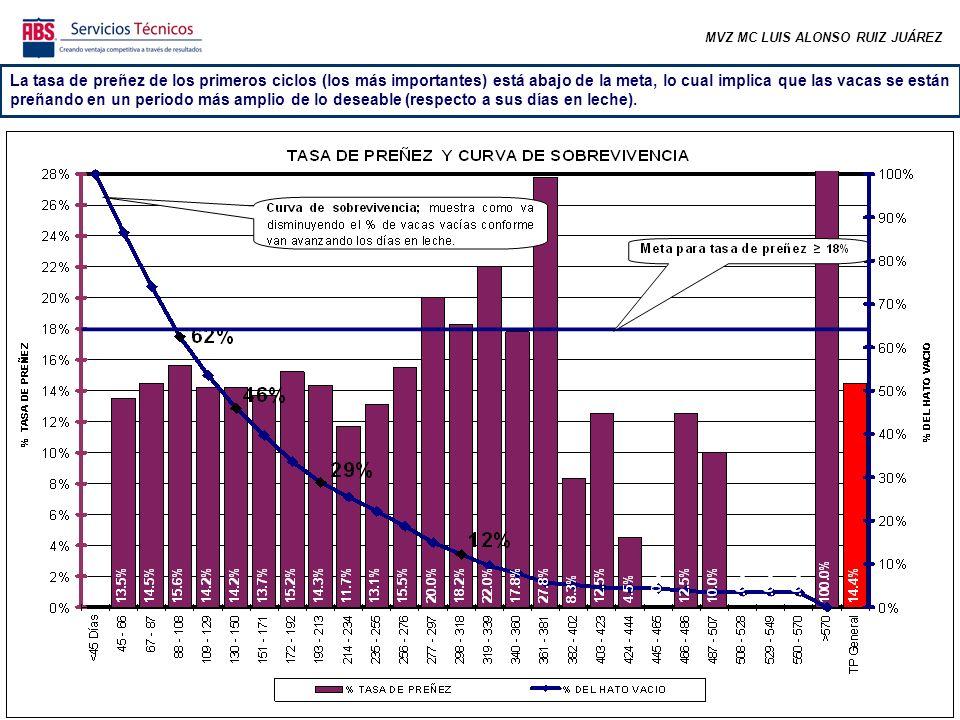 MVZ MC LUIS ALONSO RUIZ JUÁREZ La tasa de preñez de los primeros ciclos (los más importantes) está abajo de la meta, lo cual implica que las vacas se están preñando en un periodo más amplio de lo deseable (respecto a sus días en leche).