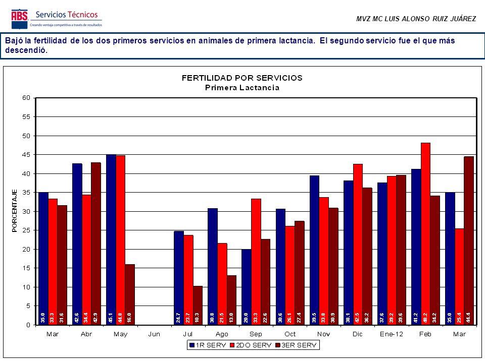 MVZ MC LUIS ALONSO RUIZ JUÁREZ La fertilidad de los primeros servicios en animales de dos o más lactancias se ha mantenido más estable.