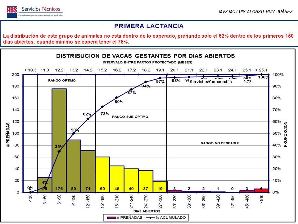 MVZ MC LUIS ALONSO RUIZ JUÁREZ PRIMERA LACTANCIA La distribución de este grupo de animales no está dentro de lo esperado, preñando solo el 62% dentro de los primeros 150 días abiertos, cuando mínimo se espera tener el 75%.