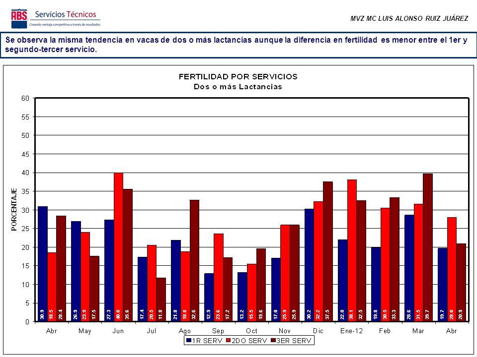 MVZ MC LUIS ALONSO RUIZ JUÁREZ Se observa la misma tendencia en vacas de dos o más lactancias aunque la diferencia en fertilidad es menor entre el 1er