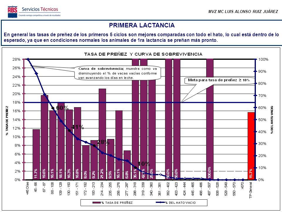 MVZ MC LUIS ALONSO RUIZ JUÁREZ PRIMERA LACTANCIA En general las tasas de preñez de los primeros 5 ciclos son mejores comparadas con todo el hato, lo c