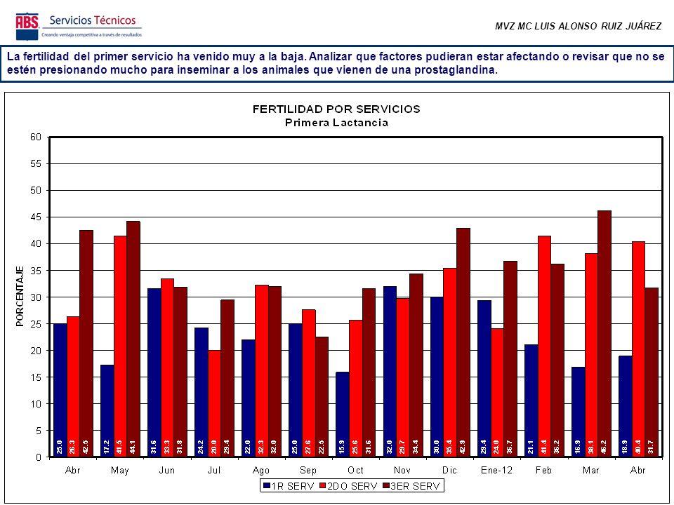 MVZ MC LUIS ALONSO RUIZ JUÁREZ La fertilidad del primer servicio ha venido muy a la baja. Analizar que factores pudieran estar afectando o revisar que