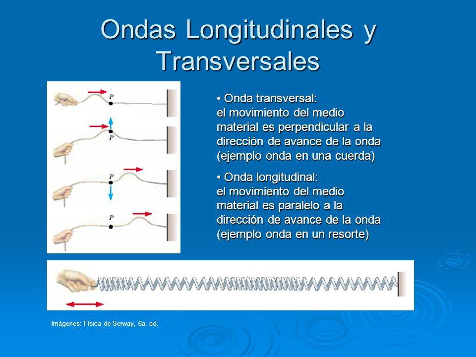Ondas Longitudinales y Transversales Onda transversal: el movimiento del medio material es perpendicular a la dirección de avance de la onda (ejemplo
