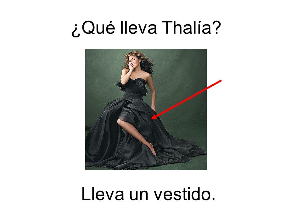 ¿Qué lleva Thalía? Lleva un vestido.