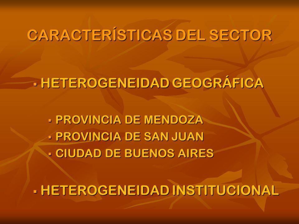 CARACTERÍSTICAS DEL SECTOR HETEROGENEIDAD GEOGRÁFICA HETEROGENEIDAD GEOGRÁFICA PROVINCIA DE MENDOZA PROVINCIA DE MENDOZA PROVINCIA DE SAN JUAN PROVINCIA DE SAN JUAN CIUDAD DE BUENOS AIRES CIUDAD DE BUENOS AIRES HETEROGENEIDAD INSTITUCIONAL HETEROGENEIDAD INSTITUCIONAL