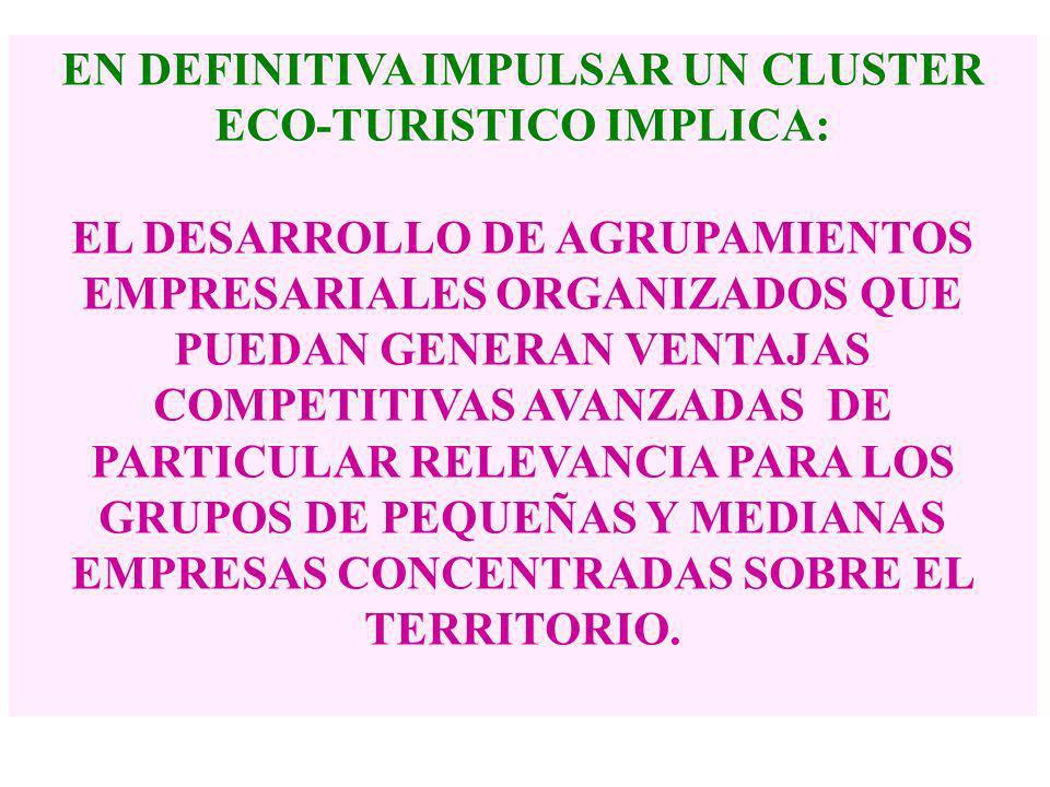 UNA POSIBLE RESPUESTA ES: DESARROLLAR UN CLUSTER PARA IMPULSAR EL ECO- TURISMO REGIONAL… CUYA IDEA CENTRAL ES: COLABORAR PARA COMPETIR