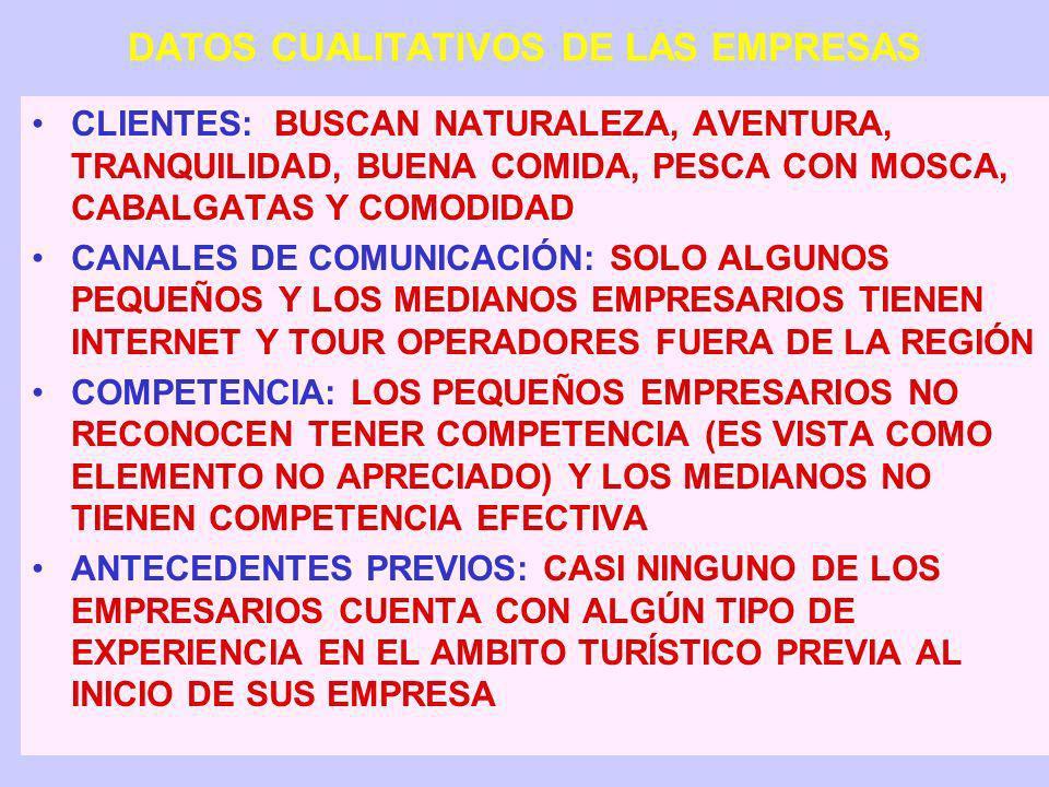 CARACTERÍSTICAS PRINCIPALES DE LAS 48 EMPRESAS 29 INICIAN ACTIVIDADES ENTRE 1996 Y 2001 33 CUENTAN CON 1 A 5 EMPLEADOS Y 7 CON 6 A 10 EMPLEADOS, Y SOL