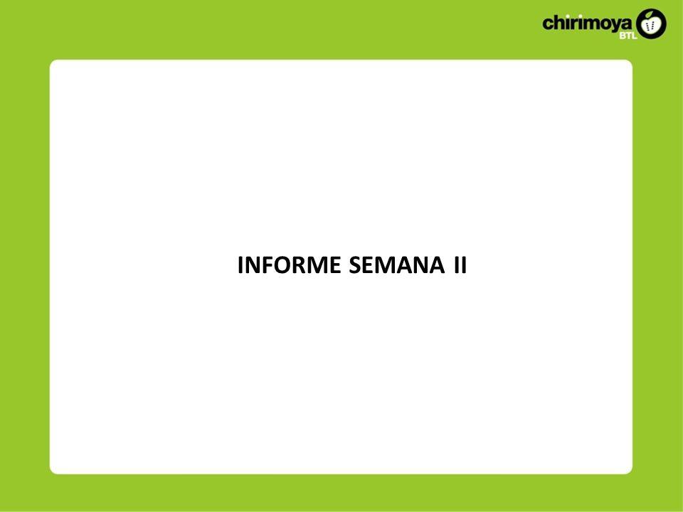 INFORME SEMANA II
