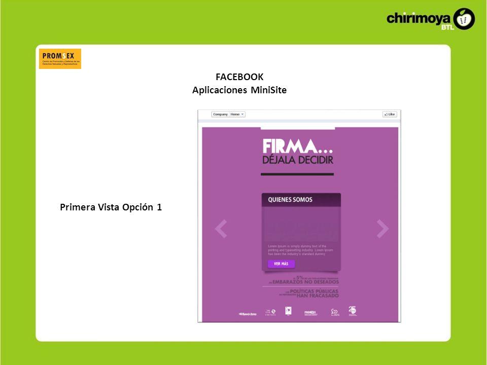 FACEBOOK Aplicaciones MiniSite Primera Vista Opción 1