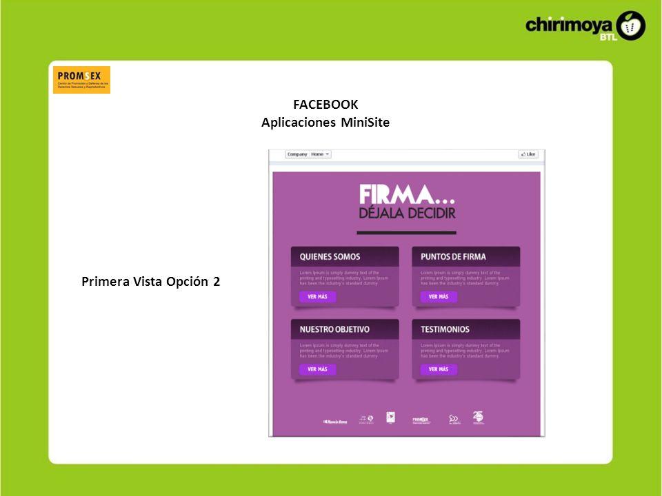 FACEBOOK Aplicaciones MiniSite Vista de contenidos Opción 1