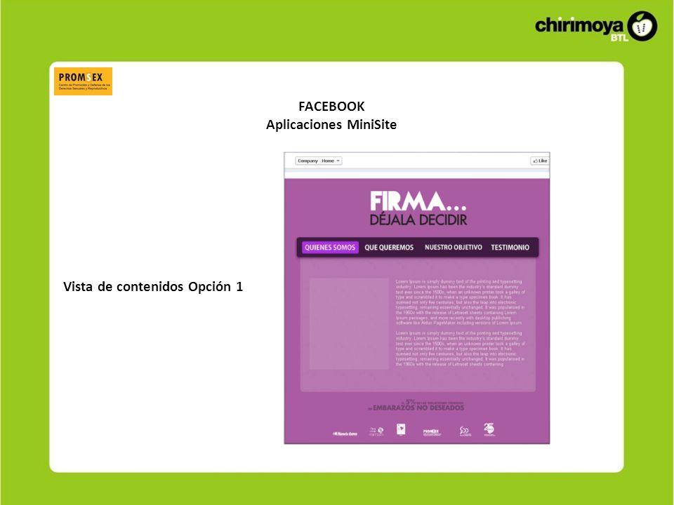 FACEBOOK Aplicaciones MiniSite Vista de contenidos Opción 2
