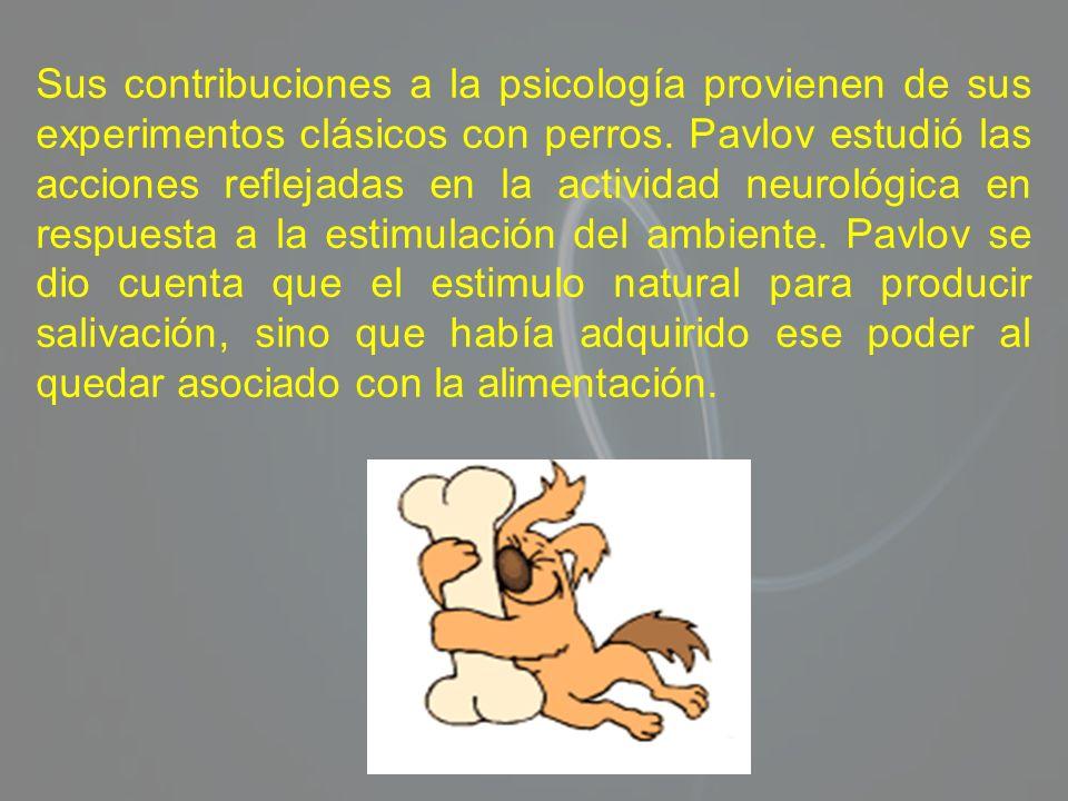 Sus contribuciones a la psicología provienen de sus experimentos clásicos con perros. Pavlov estudió las acciones reflejadas en la actividad neurológi