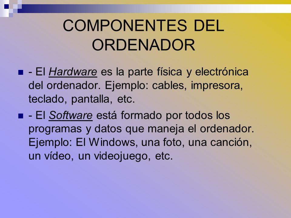 COMPONENTES DEL HARDWARE Puertos o conexiones: Permiten conectar los distintos dispositivos: - Puerto USB: En él se conectan cámaras de fotos, impresoras, ratones, Pen drives, etc.