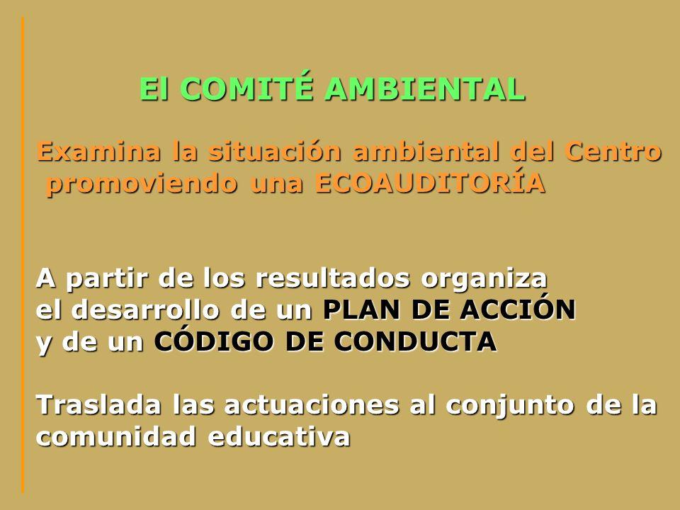El COMITÉ AMBIENTAL Examina la situación ambiental del Centro promoviendo una ECOAUDITORÍA promoviendo una ECOAUDITORÍA A partir de los resultados org