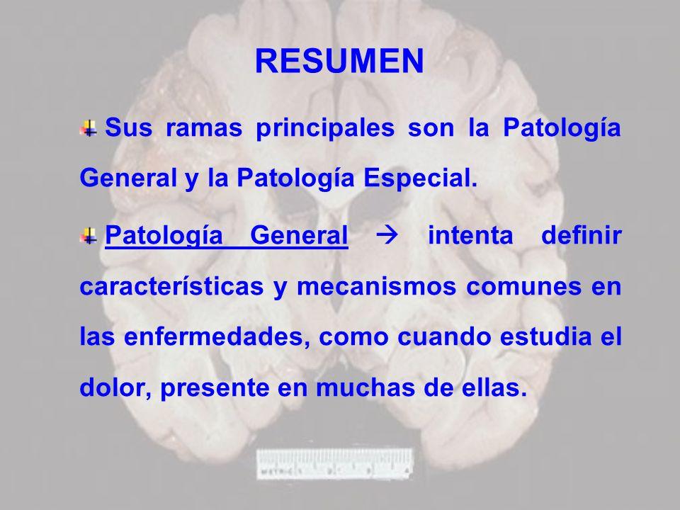 RESUMEN Sus ramas principales son la Patología General y la Patología Especial. Patología General intenta definir características y mecanismos comunes