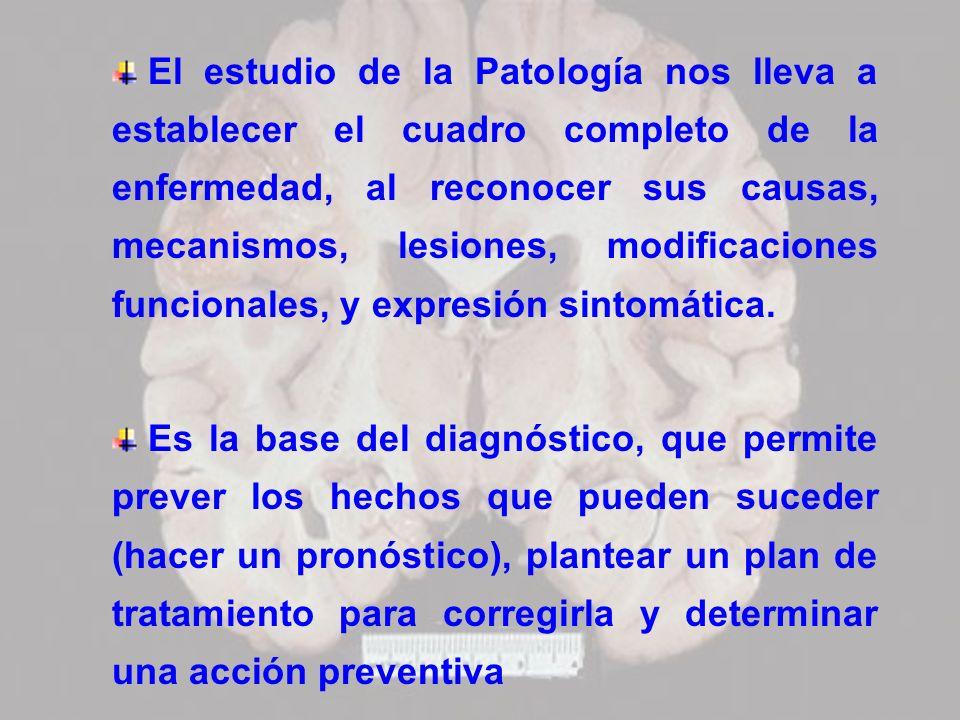 El estudio de la Patología nos lleva a establecer el cuadro completo de la enfermedad, al reconocer sus causas, mecanismos, lesiones, modificaciones f