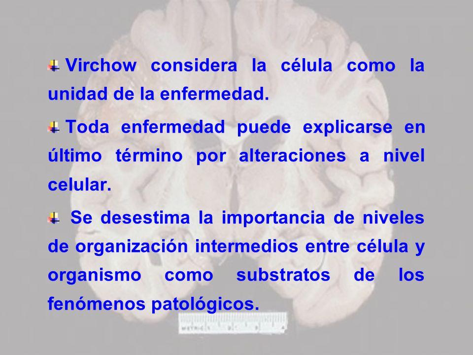 Virchow considera la célula como la unidad de la enfermedad. Toda enfermedad puede explicarse en último término por alteraciones a nivel celular. Se d