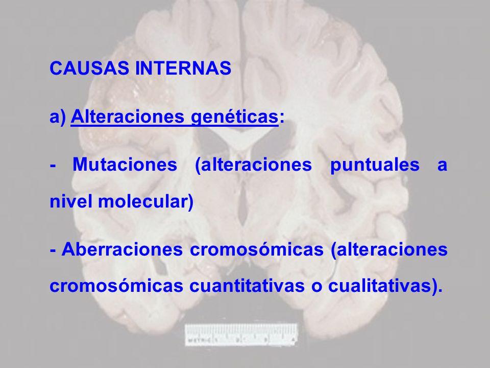 CAUSAS INTERNAS a) Alteraciones genéticas: - Mutaciones (alteraciones puntuales a nivel molecular) - Aberraciones cromosómicas (alteraciones cromosómi