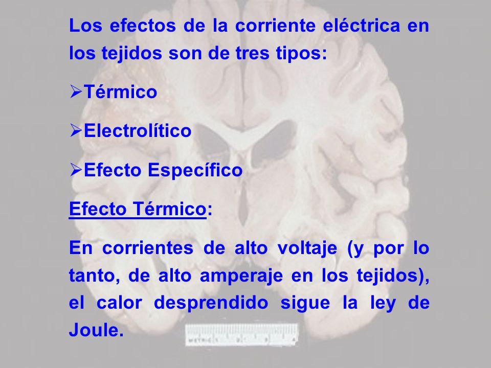 Los efectos de la corriente eléctrica en los tejidos son de tres tipos: Térmico Electrolítico Efecto Específico Efecto Térmico: En corrientes de alto