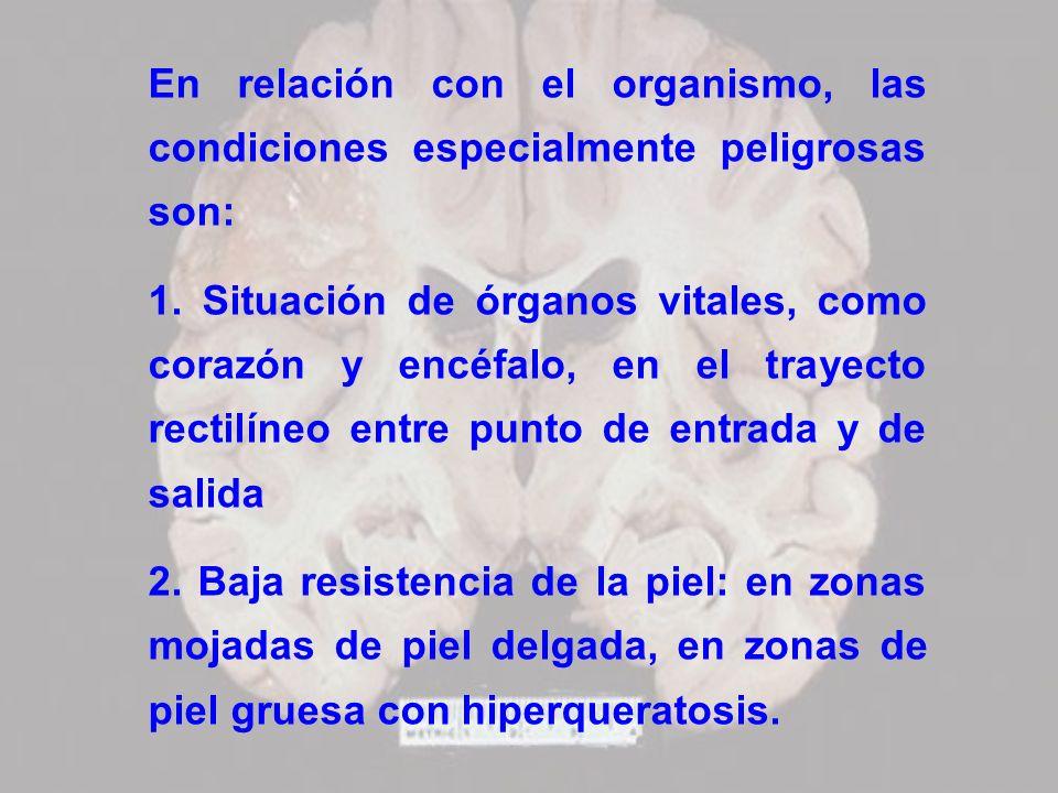 En relación con el organismo, las condiciones especialmente peligrosas son: 1. Situación de órganos vitales, como corazón y encéfalo, en el trayecto r