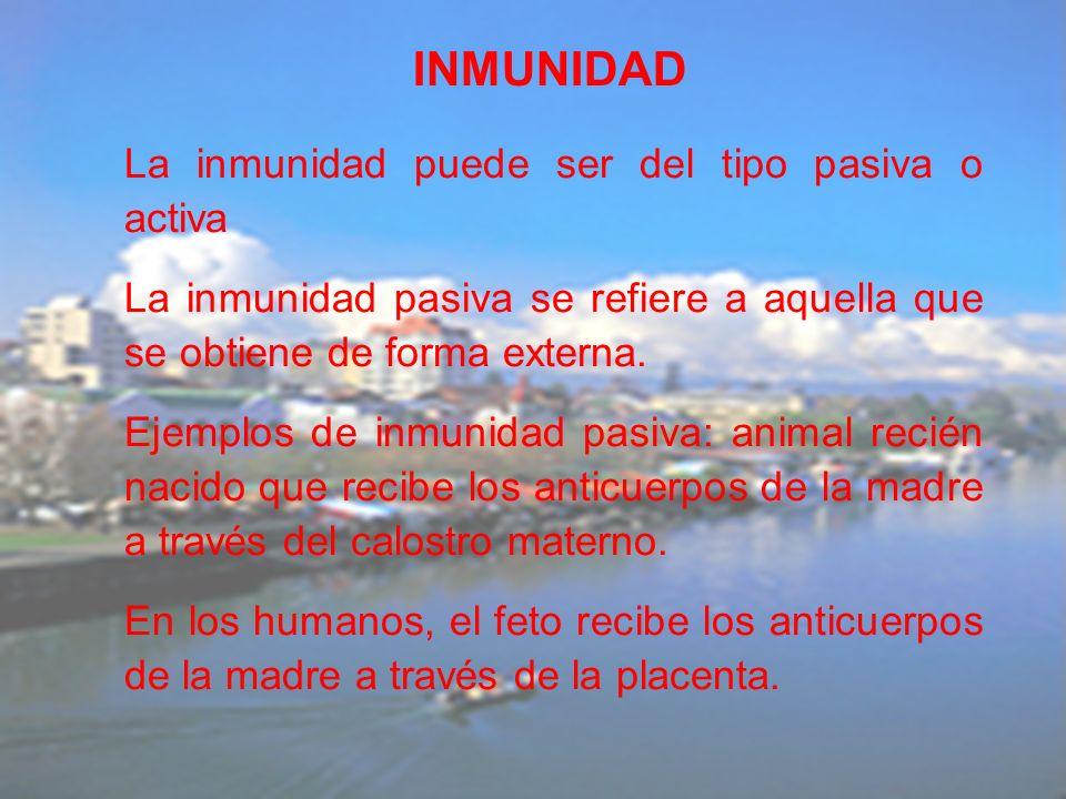 La inmunidad puede ser del tipo pasiva o activa La inmunidad pasiva se refiere a aquella que se obtiene de forma externa. Ejemplos de inmunidad pasiva