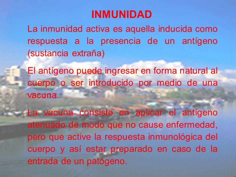 La inmunidad activa es aquella inducida como respuesta a la presencia de un antígeno (sustancia extraña) El antígeno puede ingresar en forma natural a