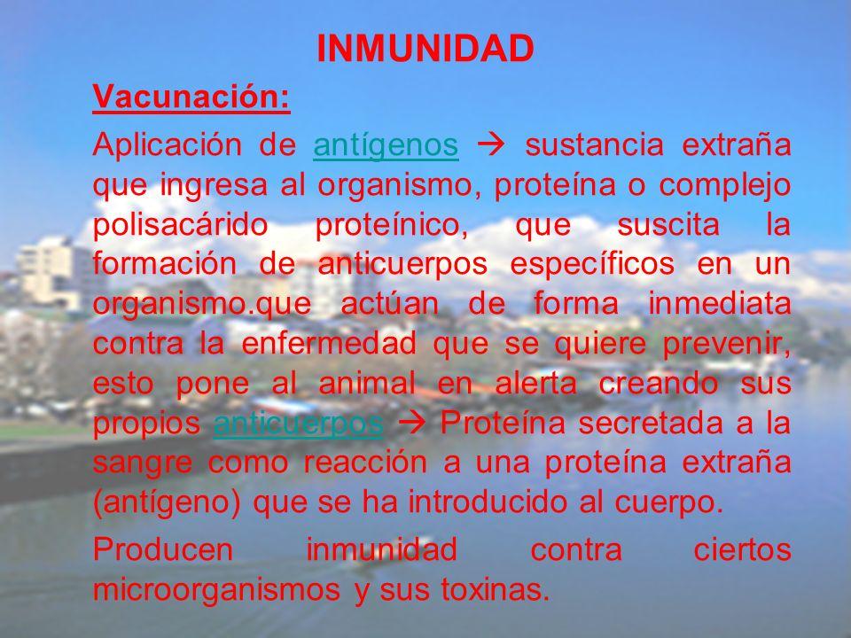 INMUNIDAD Vacunación: Aplicación de antígenos sustancia extraña que ingresa al organismo, proteína o complejo polisacárido proteínico, que suscita la