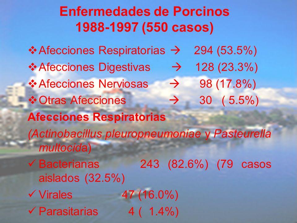 Afecciones Respiratorias 294 (53.5%) Afecciones Digestivas 128 (23.3%) Afecciones Nerviosas 98 (17.8%) Otras Afecciones 30 ( 5.5%) Afecciones Respirat