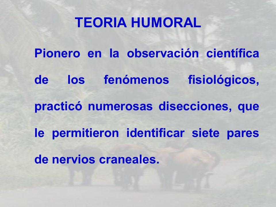 TEORIA HUMORAL Pionero en la observación científica de los fenómenos fisiológicos, practicó numerosas disecciones, que le permitieron identificar siet
