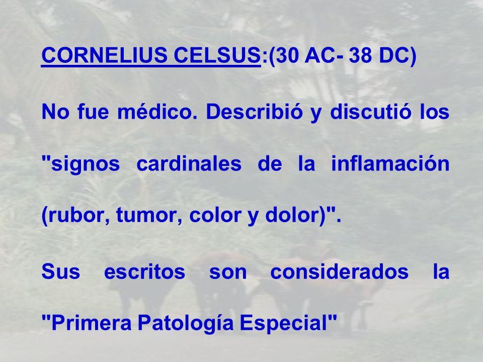 CORNELIUS CELSUS:(30 AC- 38 DC) No fue médico. Describió y discutió los