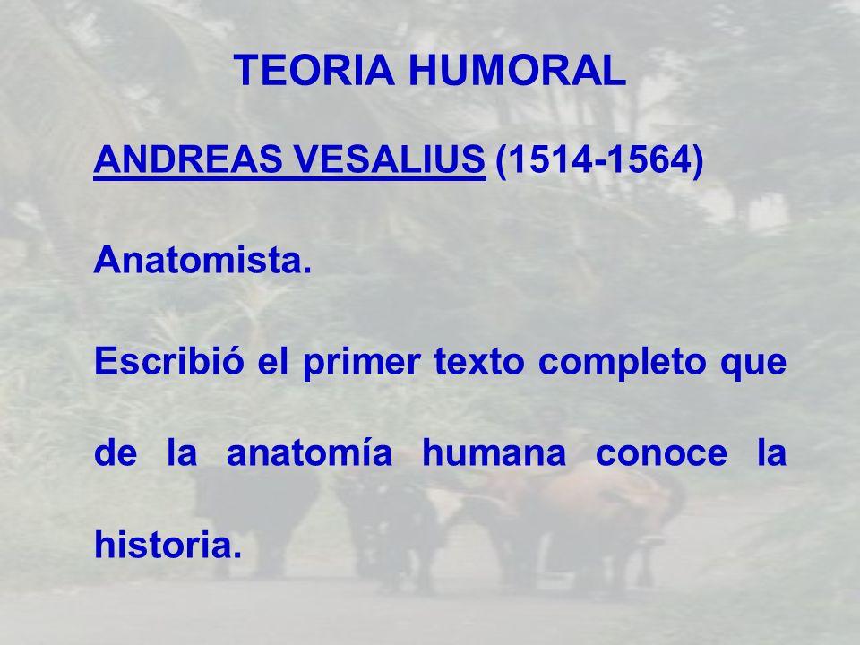 TEORIA HUMORAL ANDREAS VESALIUS (1514-1564) Anatomista. Escribió el primer texto completo que de la anatomía humana conoce la historia.