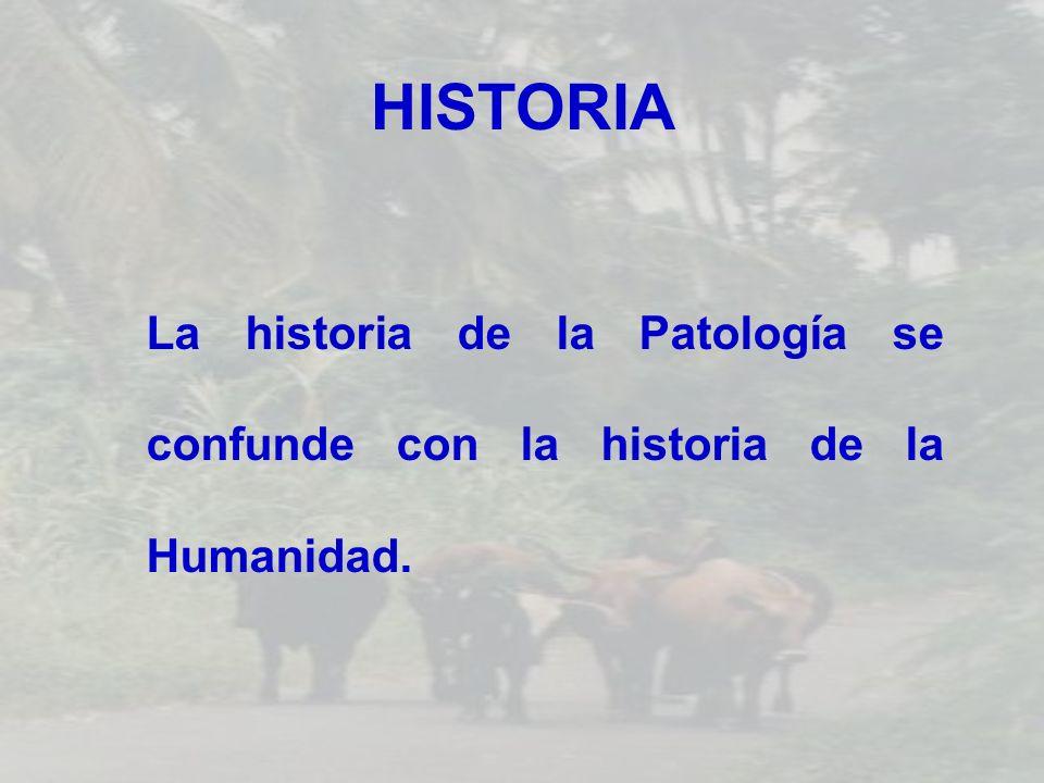 HISTORIA La historia de la Patología se confunde con la historia de la Humanidad.