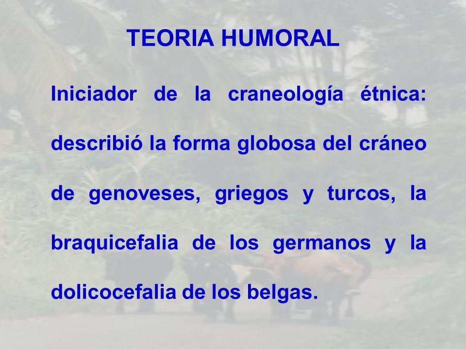 TEORIA HUMORAL Iniciador de la craneología étnica: describió la forma globosa del cráneo de genoveses, griegos y turcos, la braquicefalia de los germa