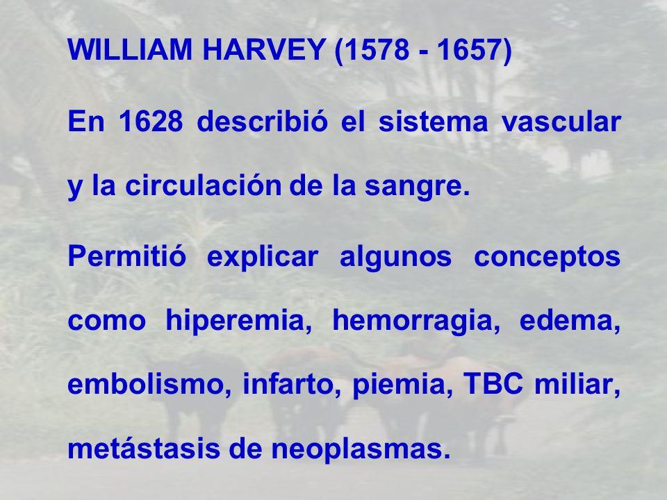 WILLIAM HARVEY (1578 - 1657) En 1628 describió el sistema vascular y la circulación de la sangre. Permitió explicar algunos conceptos como hiperemia,