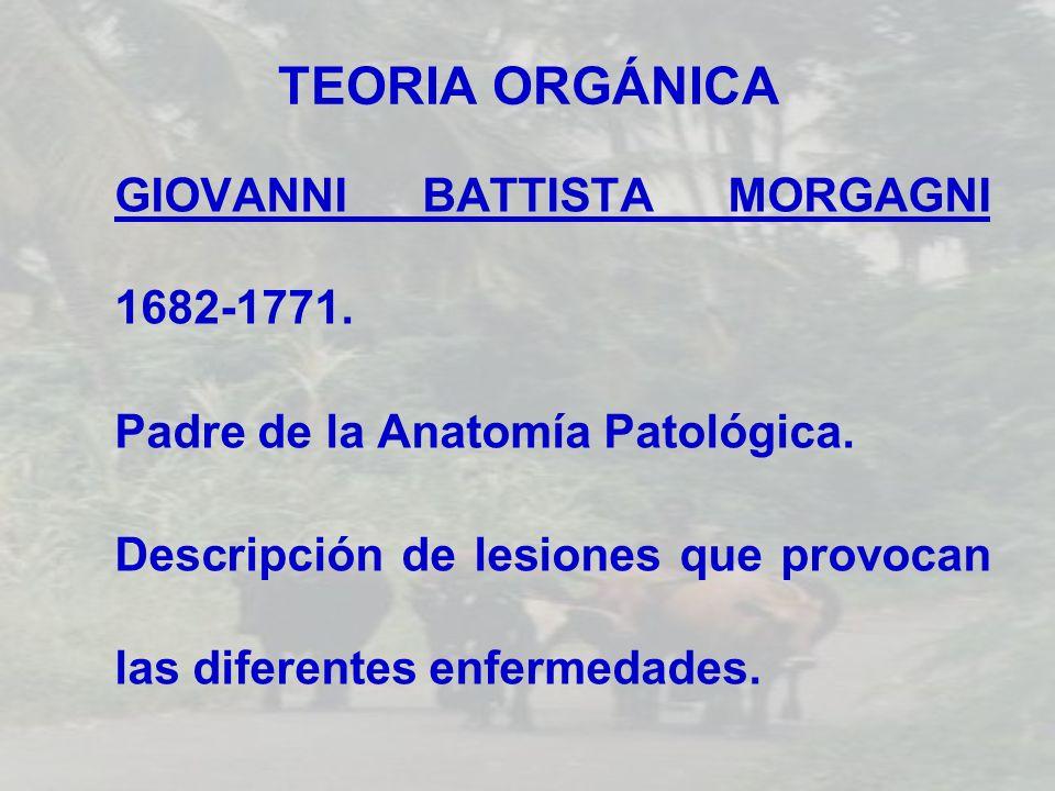TEORIA ORGÁNICA GIOVANNI BATTISTA MORGAGNI 1682-1771. Padre de la Anatomía Patológica. Descripción de lesiones que provocan las diferentes enfermedade