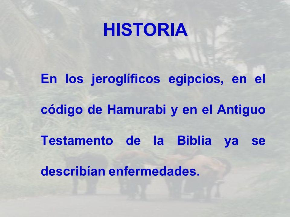 HISTORIA En los jeroglíficos egipcios, en el código de Hamurabi y en el Antiguo Testamento de la Biblia ya se describían enfermedades.