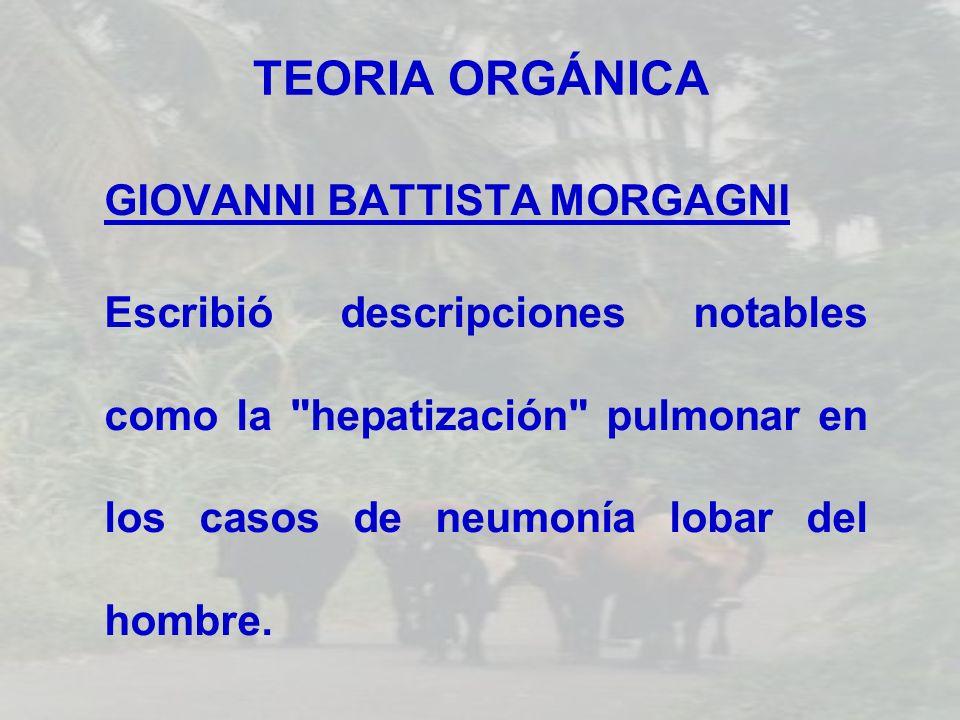 TEORIA ORGÁNICA GIOVANNI BATTISTA MORGAGNI Escribió descripciones notables como la