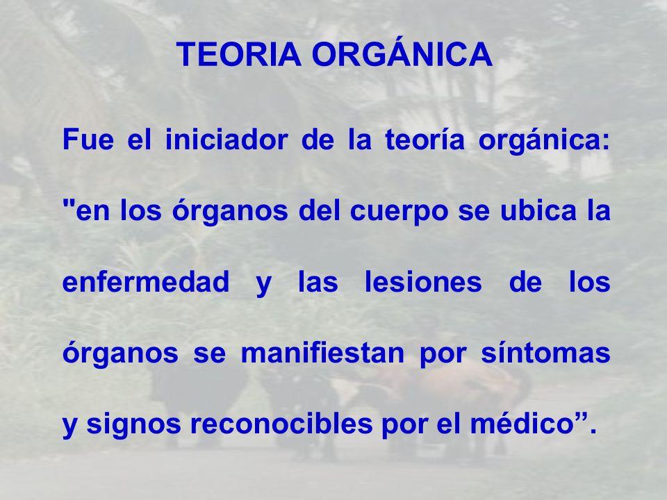 TEORIA ORGÁNICA Fue el iniciador de la teoría orgánica: