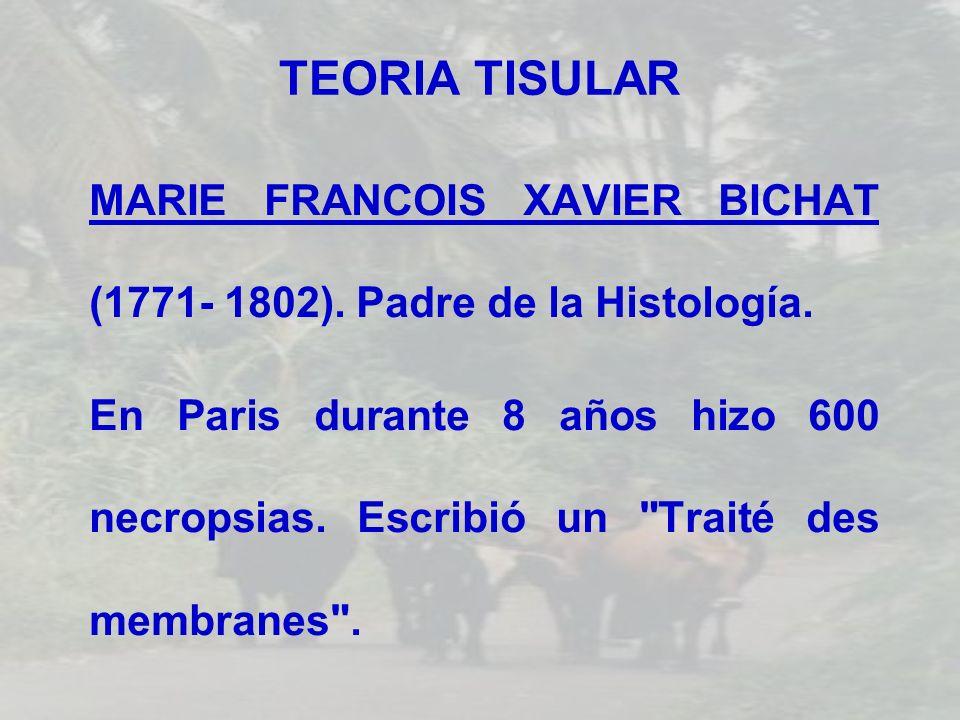 TEORIA TISULAR MARIE FRANCOIS XAVIER BICHAT (1771- 1802). Padre de la Histología. En Paris durante 8 años hizo 600 necropsias. Escribió un