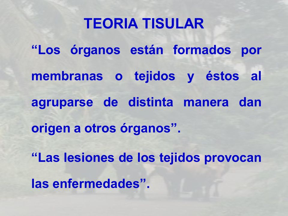 TEORIA TISULAR Los órganos están formados por membranas o tejidos y éstos al agruparse de distinta manera dan origen a otros órganos. Las lesiones de