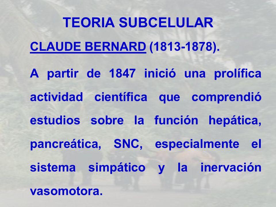 TEORIA SUBCELULAR CLAUDE BERNARD (1813-1878). A partir de 1847 inició una prolífica actividad científica que comprendió estudios sobre la función hepá