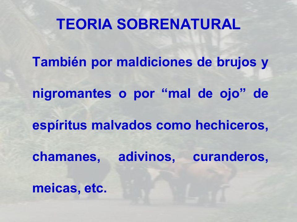TEORIA SOBRENATURAL También por maldiciones de brujos y nigromantes o por mal de ojo de espíritus malvados como hechiceros, chamanes, adivinos, curand