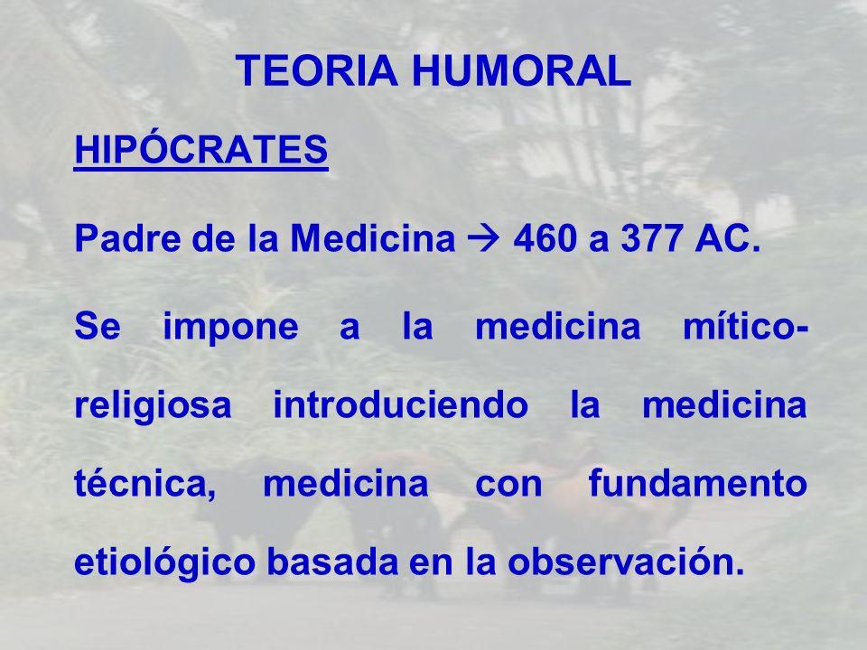 TEORIA HUMORAL HIPÓCRATES Padre de la Medicina 460 a 377 AC. Se impone a la medicina mítico- religiosa introduciendo la medicina técnica, medicina con