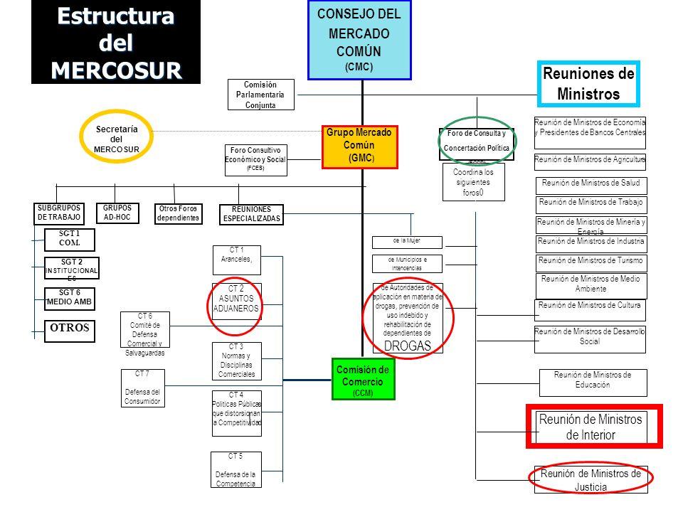 Estructura del MERCOSUR CONSEJO DEL MERCADO COMÚN (CMC) Comisión de Comercio (CCM) Grupo Mercado Común (GMC ) Secretaría del MERCOSUR Reunión de Minis