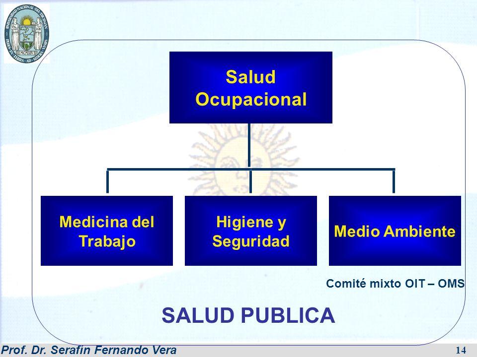 Prof. Dr. Serafín Fernando Vera 14 Medicina del Trabajo Higiene y Seguridad Medio Ambiente Salud Ocupacional Comité mixto OIT – OMS SALUD PUBLICA
