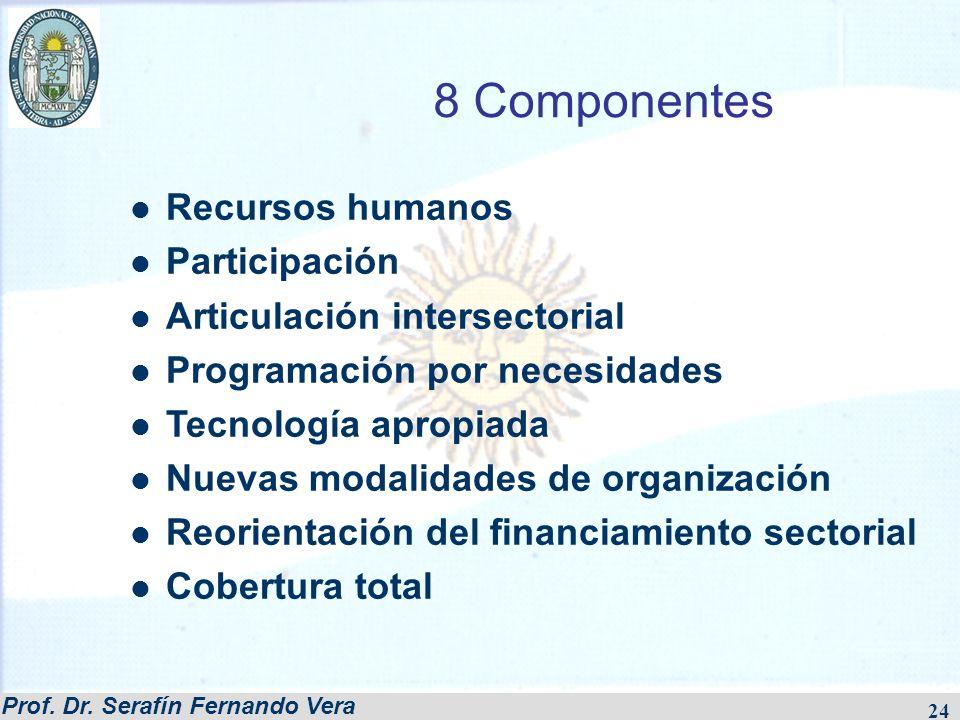 Prof. Dr. Serafín Fernando Vera 24 8 Componentes Recursos humanos Participación Articulación intersectorial Programación por necesidades Tecnología ap