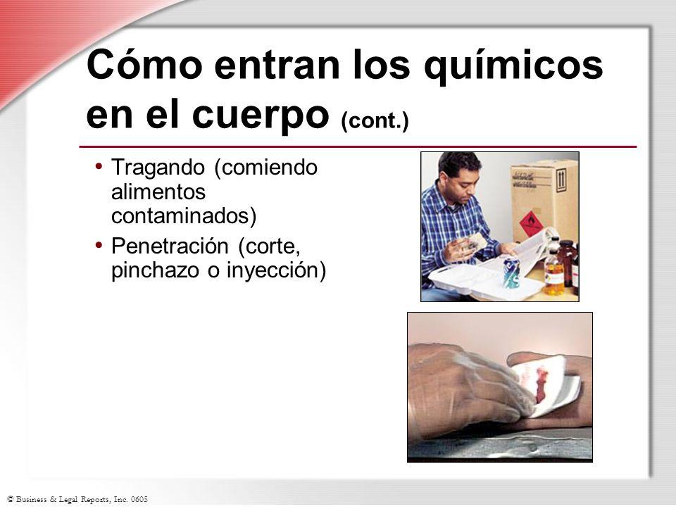 © Business & Legal Reports, Inc. 0605 Cómo entran los químicos en el cuerpo (cont.) Tragando (comiendo alimentos contaminados) Penetración (corte, pin