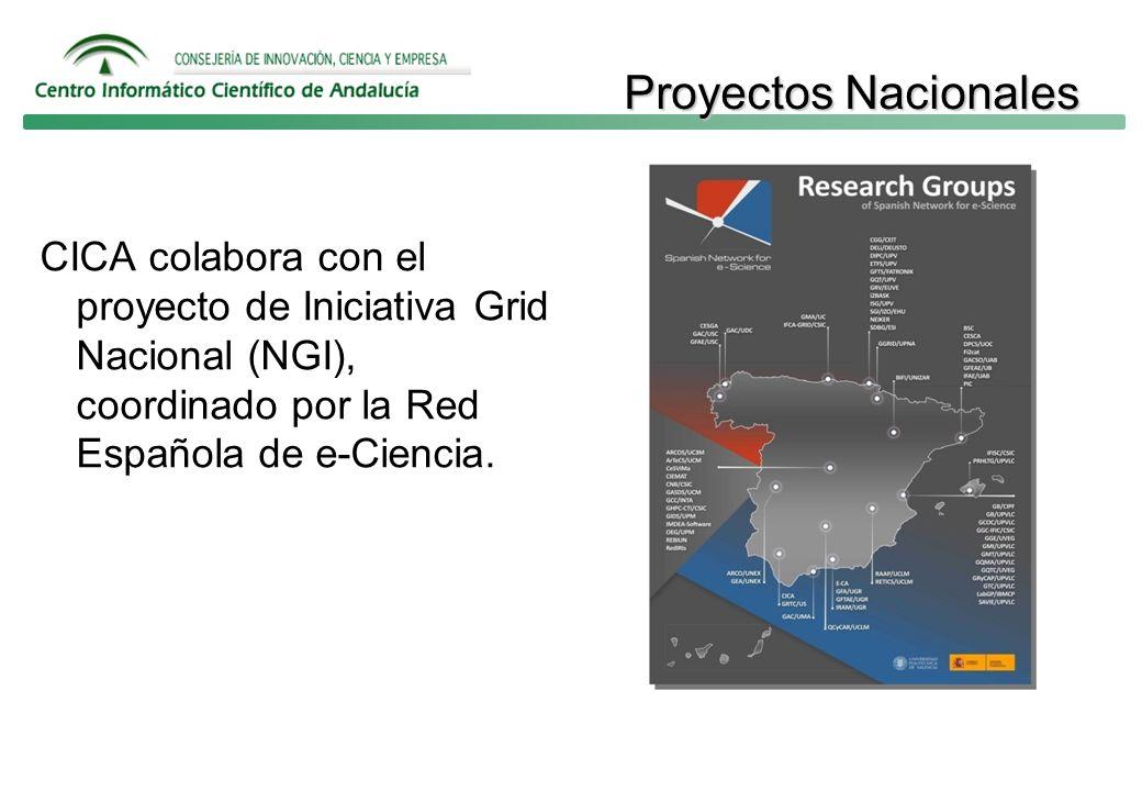 Proyectos Nacionales CICA colabora con el proyecto de Iniciativa Grid Nacional (NGI), coordinado por la Red Española de e-Ciencia.